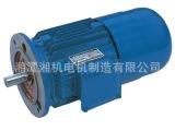 厂家直销湘潭电机090 油泵电机 Y系列三相异步电动机 步进电机