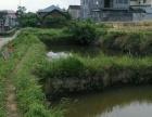 城南9亩商宅用地 厂房 6003平米