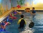大连儿童暑假游泳班 贝贝鲸儿童游泳暑期班培训