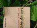 苗药土方百草舒筋膏 和 百草按摩液