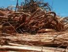 河北废旧电缆上门收购电话河北报废电缆回收企业铜电缆回收