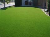跃羚 足球场人工草坪 免填充5公分人工草 幼儿园人工草跑道