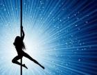 成都钢管舞培训班 聚星娜舞国际舞蹈学校