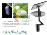 源码太阳能智慧路灯价格_哪有供应销量好的春茧灯