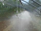 大田蔬菜种植滴灌带厂家——山东迷宫式滴灌带专业供应
