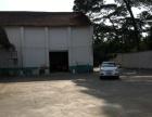 壮锦大道 万泰隆3号仓库 仓库 400平米