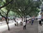 五桥上海大道佳门市转让