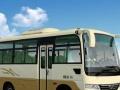 中巴客车19坐/县城内外短途包车