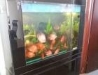 9成水族鱼缸