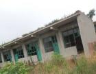 出租南和 原白庄英才小学 有众多教室办公室宿舍