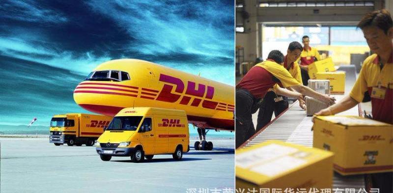 哈尔滨市DHL国际快递公司