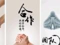 深圳威世顿科技 家用电器 家具 净水器加盟