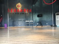 成都职业钢管舞 钢管舞演出培训 舞蹈演员培训学校