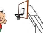 东莞篮球兴趣班 东莞篮球培训 东莞篮球培训学校