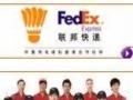 东营DHL国际快递 发文件 样品至国外 免费咨询