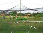 鹦鹉孔雀表演各种鸟类表演百鸟展百鸟齐鸣展览租赁