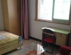 江头邮电局附近 多套全新单身公寓 新景园 1000元起租