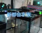 广州定做鱼缸海鲜池亚克力工程鱼缸魟鱼缸水族店水族箱假山鱼池