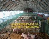 北京塑料大棚 质优价廉 施工迅速 价格合理