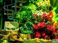 绿光森林的小童话 贝惟婚庆婚礼布置婚礼策划