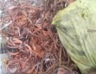 沧州废旧电缆废紫铜线回收价格