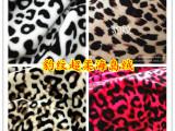 供应多色豹纹印花面料全涤加厚豹纹单面绒针织面料 家纺服装面料