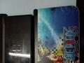 大3dll 32g和nds两个游戏机