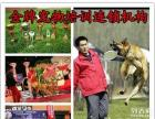 宠物美容师训犬师宠物医疗营养师培训招生金牌宠物学校