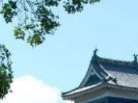 枫叶季- 日本大阪、台场、东京双飞七日游