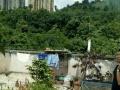花果园 花果园湘雅村 厂房 84平米外带楼层花园