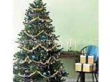 厂家批发仿真圣诞树1.8米创意圣诞树布置室内圣诞树哪里有