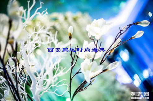 西安婚庆公司排名,西安礼仪庆典公司,南郊鹏远婚庆