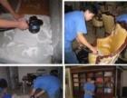 低价承接打扫卫生,擦玻璃,粉刷,防水 保质量