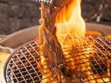 5年老牌哈哈碳都烤肉2020升级焕新,大口吃肉打造哈式文化