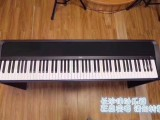 KORG系列电钢琴