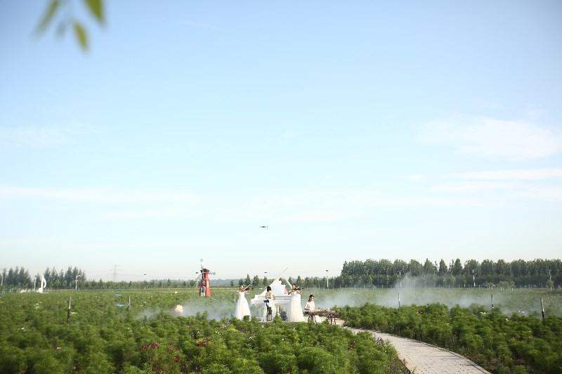 河北省沧州河间市兴丰农业文化主题公园环境真好