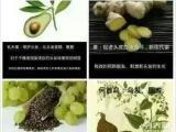 绿知了 纯植物的洗护产品