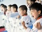 大兴黄村专业少儿跆拳道培训 4.5岁以上 免费试听