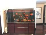 家具办公家具回收,沙发鱼缸回收,空调电视回收,