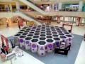 珠海金湾蜂巢迷宫绿植迷宫镜子迷宫 蜂巢迷宫设备租赁安装