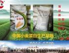 寵物飼料沙琪瑪水產飼料魚餌瑞冠谷朊粉廠家直銷