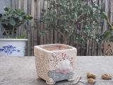 韩国雕刻多肉花盆桌面绿植花器陶瓷手绘花盆 家居装饰 园艺饰品