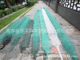 36节8.1米长逮泥鳅黄鳝渔网龙虾河虾网
