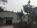 龙马潭周边 龙马潭区长安镇 厂房 2000平米