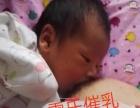 长春雷氏普爱,专业催乳师,产后护理 竭诚为您服务、