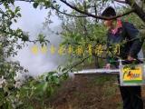 大功率 果园弥雾机 林业烟雾机 大棚专用弥雾机 打药机