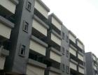 (实价实图)三水高新科技园高标准独院厂房 8796平米