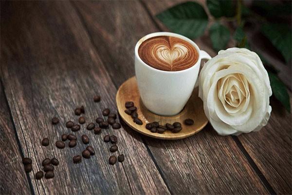 开一家新沙洞咖啡能赚钱吗