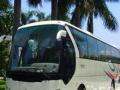 专租24-28-39-47-55-66大中型客车