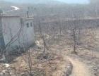 出售长清500平米土地带车库,农村小院